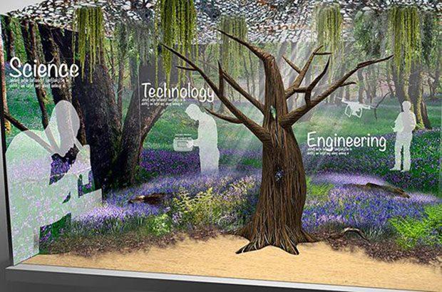 Chelsea Flower Show - STEM image