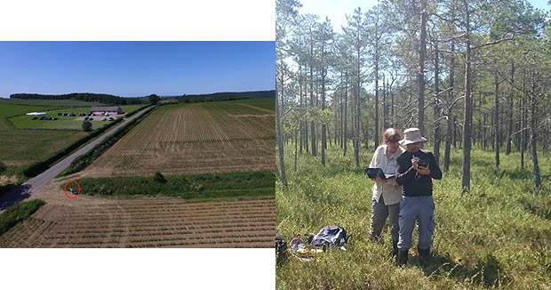 Photo of Jean McKendree in a woodland with a gentleman looking at clipboards and an image of some fields.