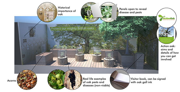 Simulated design of the garden showing: the historical importance of oak, panels open to reveal disease and pests, 'Action Oak': aims and details of how you can get involved, visitor book can be signed with oak gall ink, real life examples of oak pests and diseases (non-viable) and acorns.
