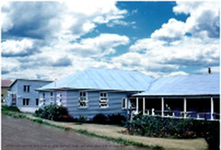 Photo of the veterinary school at the University of Queensland as Margaret Lucas would have known it in the 1950s. The buildings are completely blue. (courtesy of the University of Queensland Library).