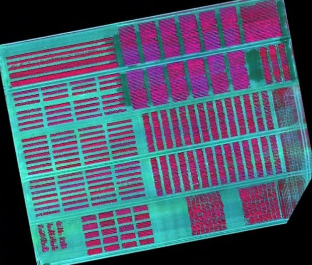 Aerial image of a field showing rows of crops in infra-red