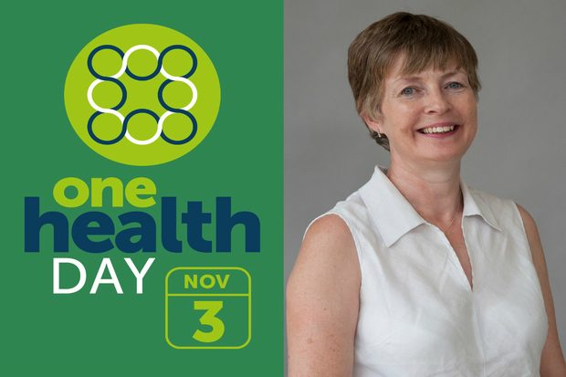 Image split in half showing 'One Health Day November 3' on one half and an image of a lady wearing a white sleeveless shirt smiling at camera.