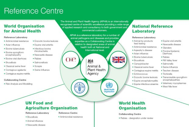 Reference Centre Diagram. The Animal and Plant Health Agency (APHA) is an internationally recognised centre of scientific excellence providing a wide range of applied research and consultancy to both government and commercial customers. APHA is a reference laboratory for a number of animal pathogens and diseases and provides expertise as a Collaborating Centre in relation to designated areas of animal health both at National and International level. World Organisation for Animal Health: Reference Laboratory: Antimicrobial resistance, Avian influenza, Bovine tuberculosis, Bovine spongiform encephalopathy, Bovine viral diarrhoea, Brucellosis, Classical swine fever, Contagious agalactia, Contagious equine metritis, Enzootic bovine leukosis, Equine viral arteritis, Infectious bovine rhinotracheitis, Newcastle disease, Rabies, Salmonellosis, Scrapie, Swine Influenza. Collaborating Centre: Risk Analysis and Modelling. National Reference Laboratory: Reference Laboratory: Animal by-products feed testing, Antimicrobial resistance, Aujeszky's disease, Avian influenza, Bovine tuberculosis, Brucellosis, Campylobacter, Classical swine fever, Contagious equine metritis, Echinococcus, Enzootic bovine leukosis, Equine encephalomyelitis, Equine infectious anaemia, Equine viral arteritis, Newcastle disease, Glanders, Porcine Epidemic Diarrhoea, Rabies, Rift Valley fever, Salmonella, Swine Influenza, Teschen disease, Trichinella, Transmissible spongiform encephalopathies, Veterinary mycoplasmas, West Nile fever. World Health Organisation: Collaborating Centre: Rabies - designation under review. UN Food and Agriculture Organisation: Reference Laboratory: Brucellosis, Animal Influenza, Newcastle disease. Reference Centre: Antimicrobial resistance. In the centre of the diagram are 5 logos for: OIE, Animal and Plant Health Agency, a Union Jack flag, FAO and World Health Organization.