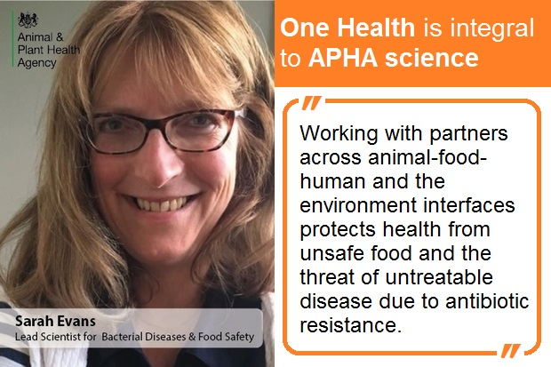 Image of Sarah Evans, Lead Scientist for Bacterial Diseases and Food Safety against text to the right-hand side which says, 'One Health is integral to APHA Science. Working with partners across animal-food-human and the environment interfaces protects health from unsafe food and the threat of untreatable disease due to antibiotic resistance.'