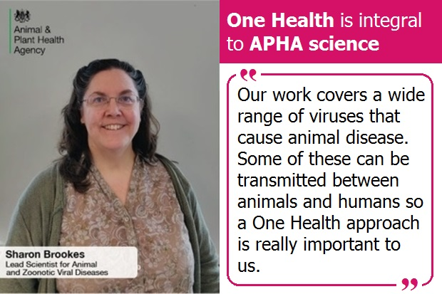 "Image of Sharon Brookes with the title One Health is integral to APHA Science. The quote on the image says, ""Our work covers a wide range of viruses that cause animal disease. Some of these can be transmitted between animals and humans so a One Health approach is really important to us."""