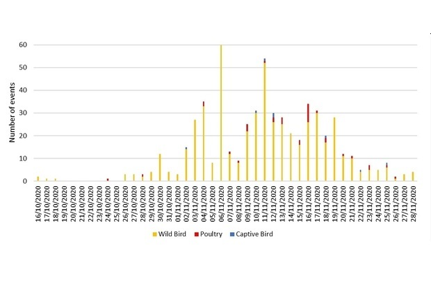 Image of a bar graph with number of events on the y axis and dates on the x axis. The highest number of events appears on 06.11.2020 with the most instances in wild birds and then gradually declines.