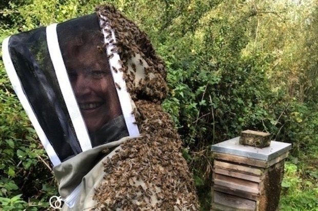 Image of Seasonal Bee Inspector, Avril Earl. She is standing with a bee suit on and is covered in bees. A bee hive stands in the background.