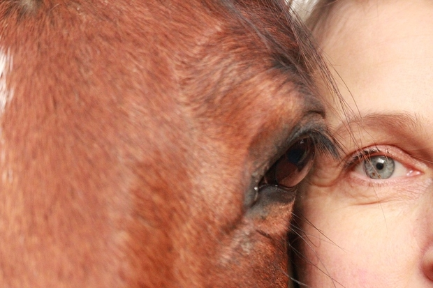 Image of a horse's head next to a human head, both looking straight into the camera.