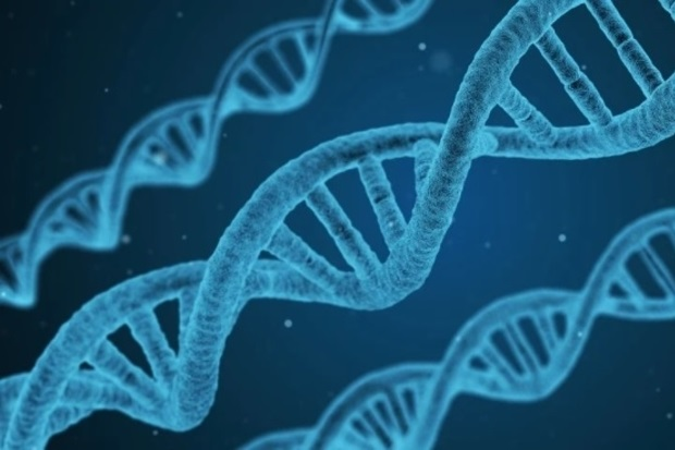 Image of DNA strands all in blue