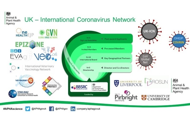 Image containing logos in the UK international coronavirus network. The image is footed with #APHAscience, the Twitter logo next to @APHAgovuk, the Facebook logo next to @APHAgov and the LinkedIn logo next to company/aphagovuk. Logos are: Animal and Plant Health Agency, One Health EJP, Global Virus Network, Epizone, EVAg, VEO, International Veterinary Vaccinology Network, VetBioNet, STAR-IDAZ: International Research Consortium on Animal Heath, PROTECT, UK-ICN, OHEJP COVRIN, CoV Global Net, University of Liverpool, ROSLIN, The Pirbright Institute and University of Cambridge. Funded by BBSRC and Department for Environment, Food and Rural Affairs.