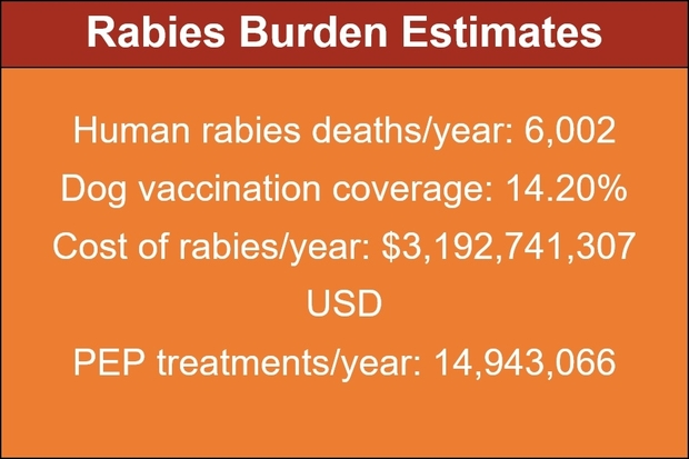 Image entitled: Rabies Burden Estimates. Below sit the following facts and figures: human rabies deaths per year 6,002, dog vaccination coverage 14.20%, cost of rabies per year $3,192,741,307 USD, PEP treatments per year 14,943,066