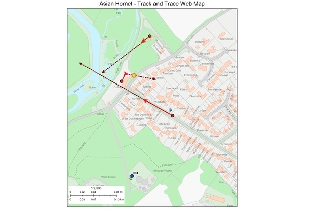 Image of a screenshot from the Track and Trace app entitled , 'Asian Hornet - Track and Trace Web Map'