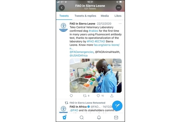 """Image of a Twitter screenshot saying, """"FAO in Sierra Leone - 22/12/2020. Teko Central Veterinary Laboratory confirmed dog #rabies for the first time in many years using Flourescent antibody test, thanks to operationalzation of the laboratory by #FAO #ECTAD Sierra Leone."""